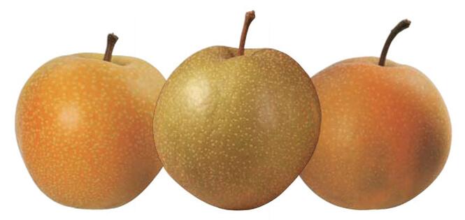 nashi mela pera trybeca centallo cuneo